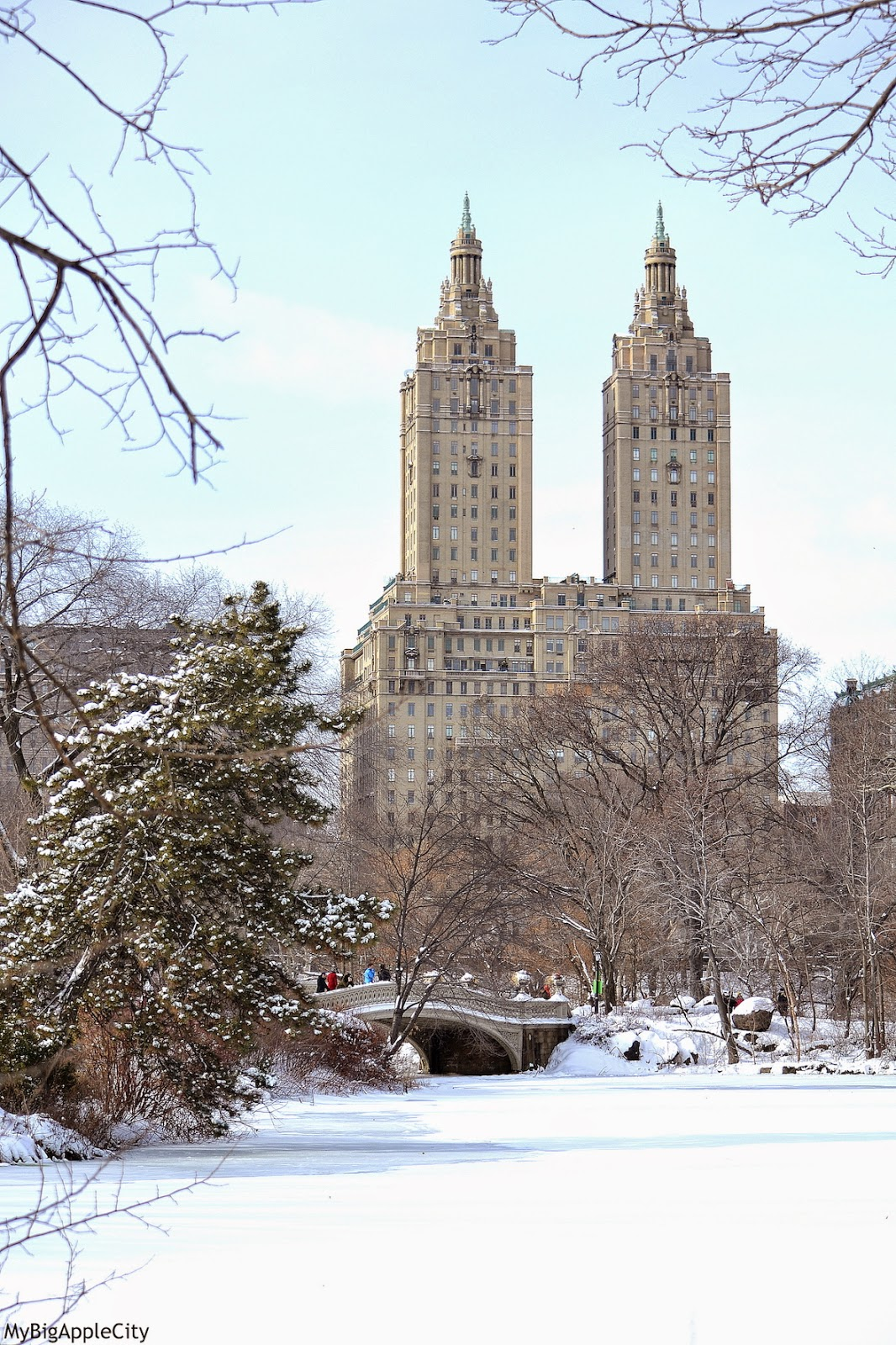 juno-2015-NYC-Blizzard-Central-park-photography