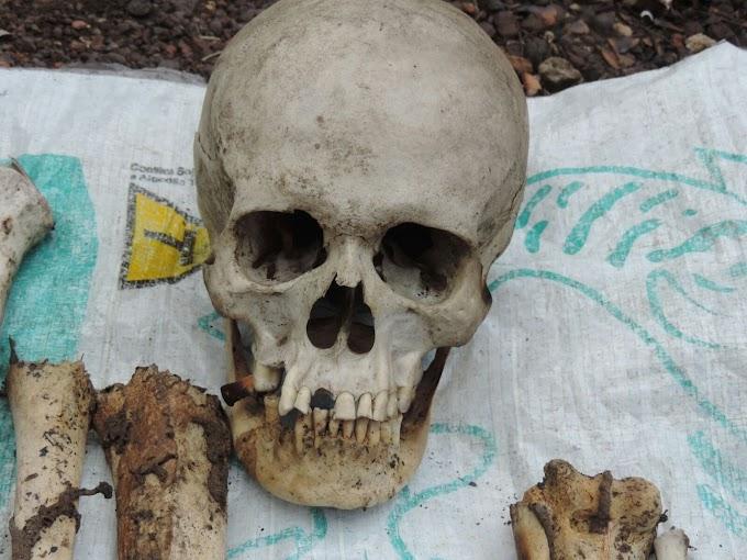 Polícia Civil encontra ossada humana em matagal em Coelho Neto-MA