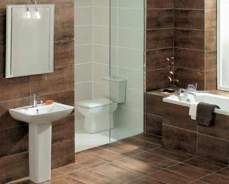 Decorating ideas bathroomsgallery pages bathroom design for Small toilet and bath design