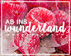 http://abinswunderland.blogspot.it/