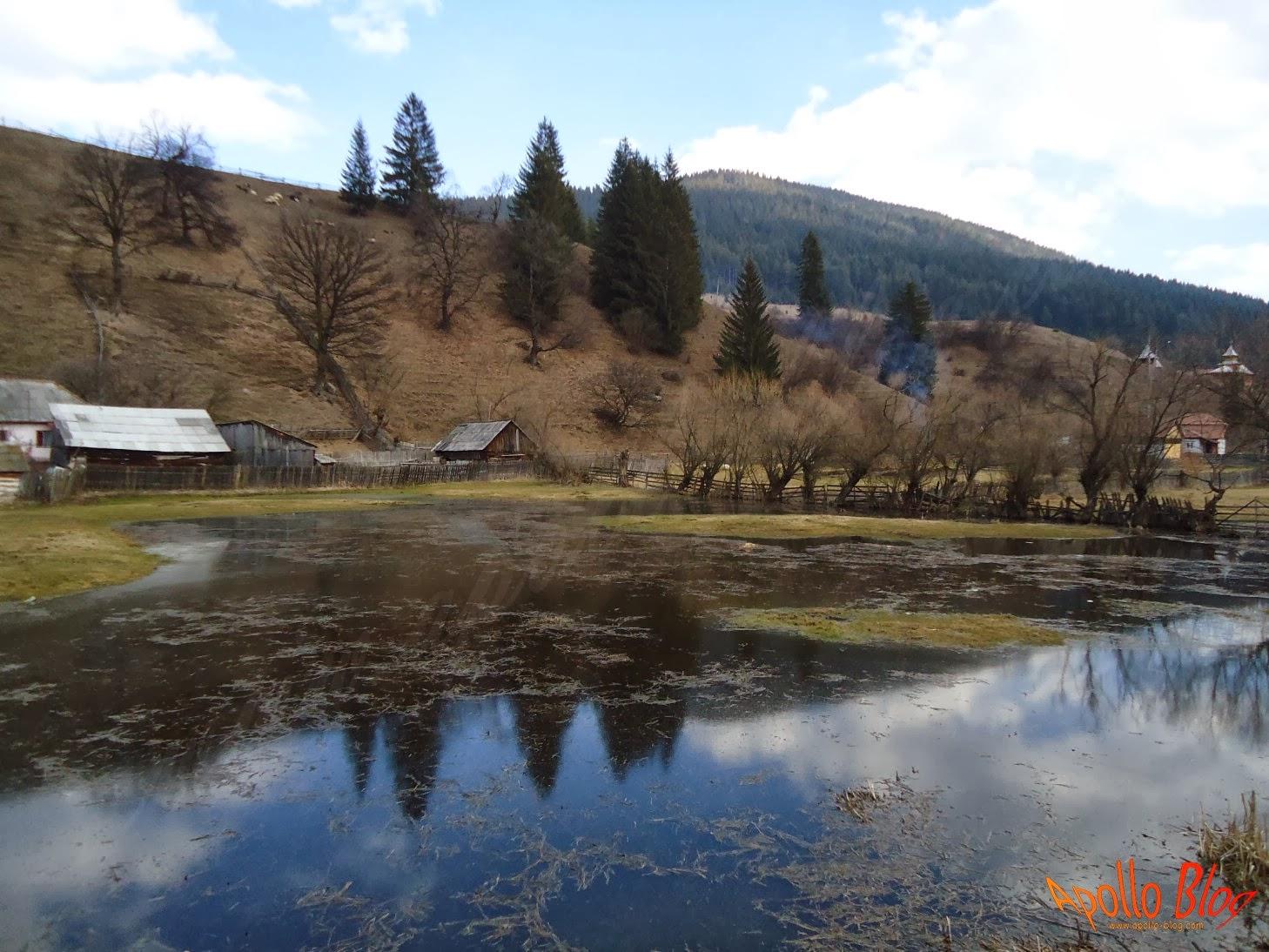 Teren inundat in Toplita