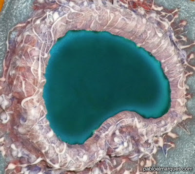 Tutorial efecto agua: 'Still Water'