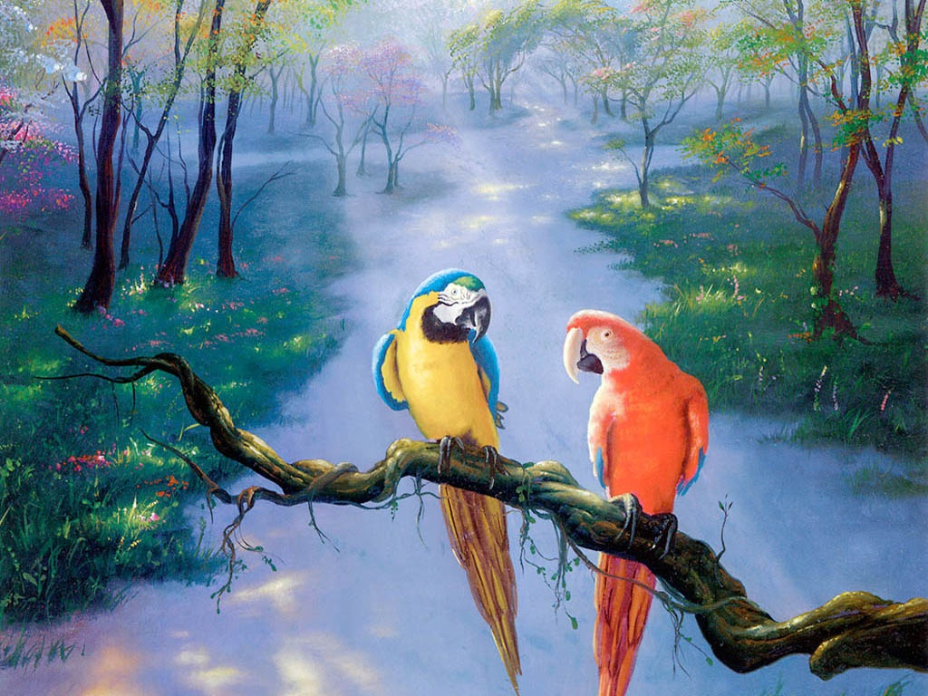 Labels Oil Paintings Wallpapers Parrot Artwork Painting