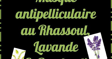 Les id es de samia blog cologique diy masque for Antipelliculaire fait maison