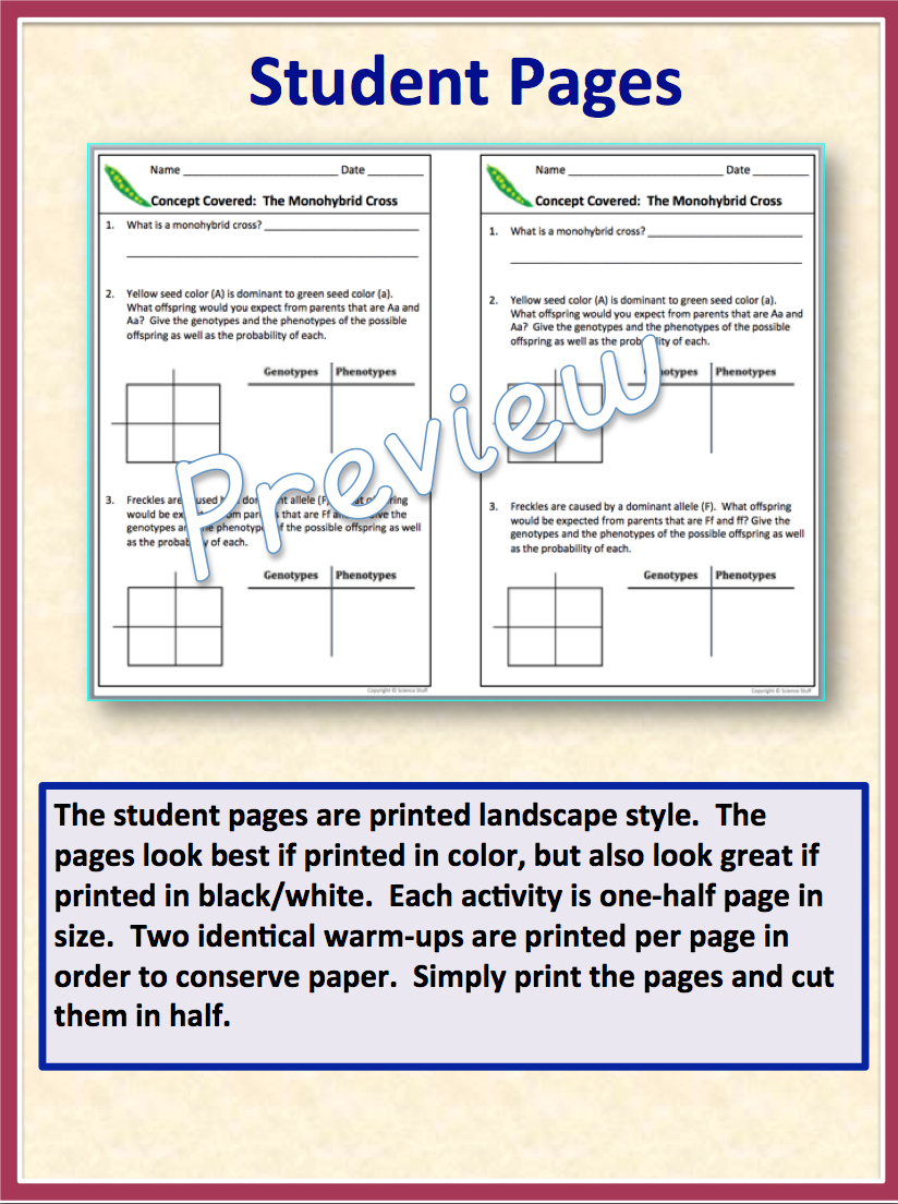 Amy brown science each printed page has two identical warm ups the only thing you have to do is print the pages and cut them in half complete answer keys are also included fandeluxe Choice Image