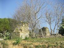 Las huertas abandonadas