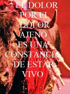 ABOLICIÓN YA!!! CERO MALTRATO ANIMAL.