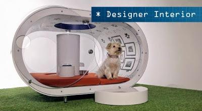 Η Samsung κατασκεύασε ένα ονειρικό high-tech σπίτι για σκύλους