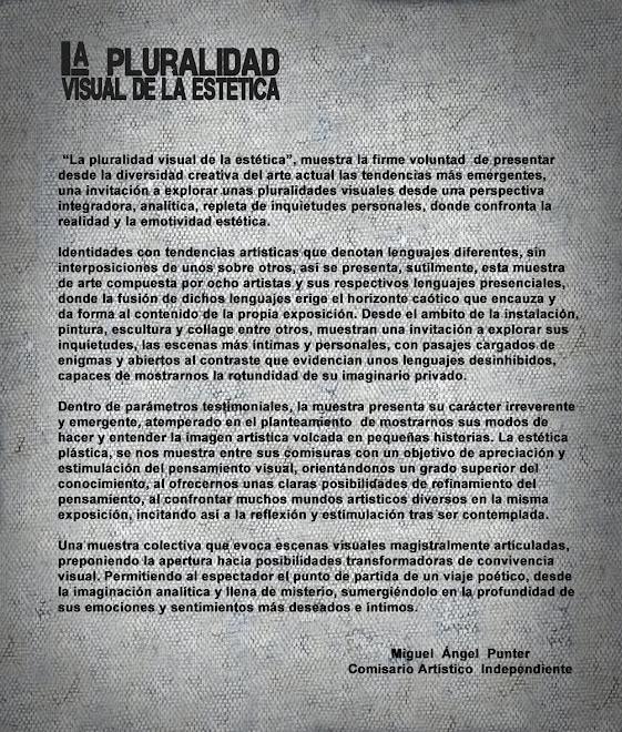 TEXTO - LA PLURALIDAD VISUAL DE LA ESTETICA