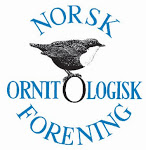 Norsk Ornitologisk Forening