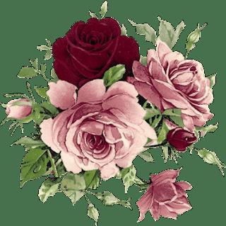 Fondos de flores, Imágenes: Flores - todoFONDOS.com