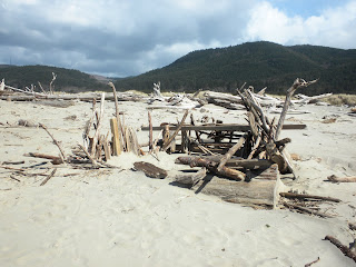 photo of driftwood fort at Nedonna Beach Oregon by Nancy Zavada
