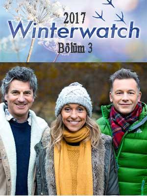 Winterwatch 2017 E3