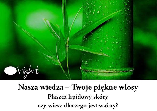 Trycholog Weronika Słupek warszawa