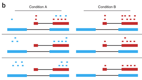 Differential Isoform Expression With RNA-Seq: Are We Really There Yet?