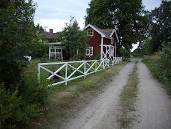 En blogg om livet på landet