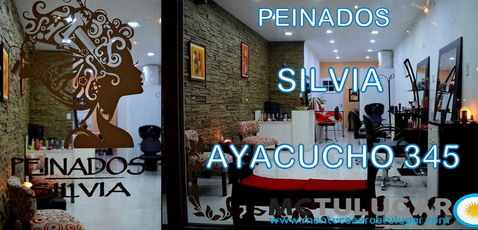 PEINADOS SILVIA Ayacucho 345