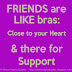 Friends are like bras. Close to the heart and there for support