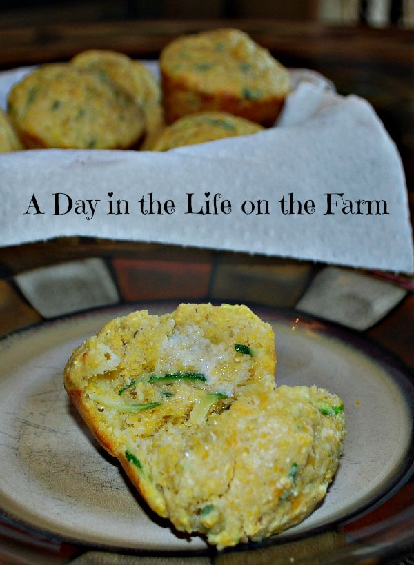 A Day in the Life on the Farm: Zucchini, Jalapeno, Cheese ...