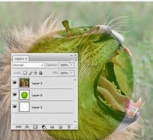 Cara Menggabungkan 2 Objek Yang Berbeda Dengan Photoshop