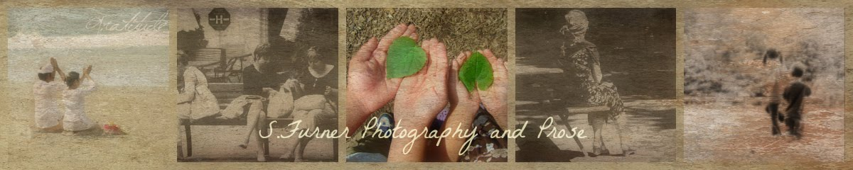 Photography and Prose