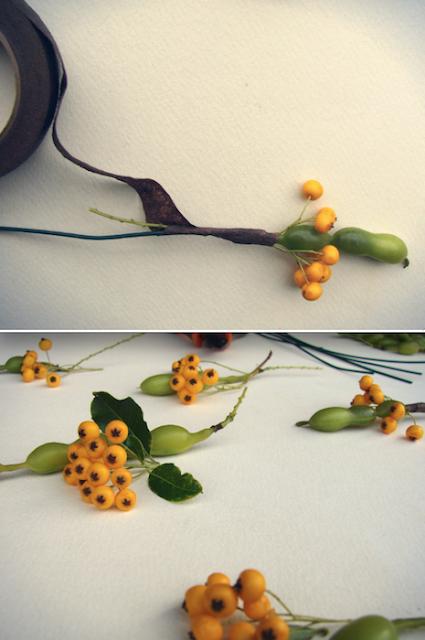 diy: decorazioni con semi, bacche e baccelli, autunnali, Roma
