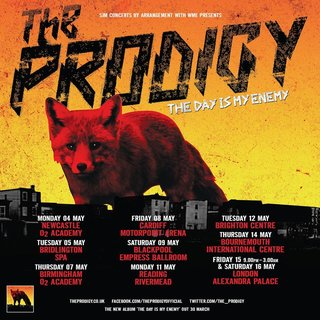 THE PRODIGY The Day Is My Enemy Lyrics