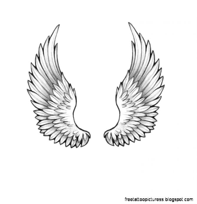 Wings tattoo design on Pinterest  Wing Tattoo Designs Wing