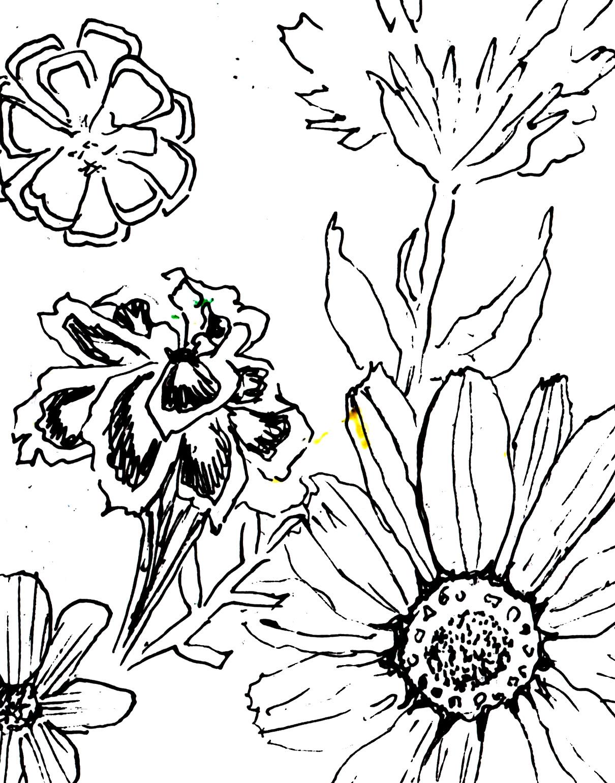 Show Me More Colorear Patio Colouring Pages