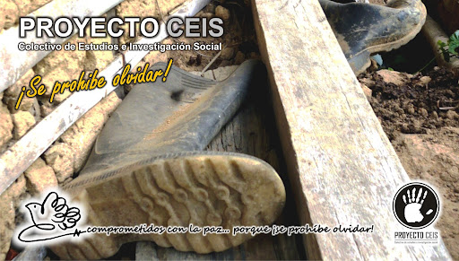 Proyecto CEIS
