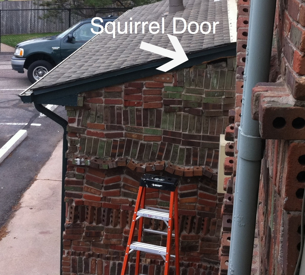 ... continuing squirrel saga. He assures me that this will stop them. He also informed me that the fox urine did nothing. Soooo glad I didn\u0027t buy a pet fox. & The Young and The Relentless: The Circle of Trust: A Squirrel Story