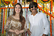 Bengal Tiger Movie launch event photos-thumbnail-7