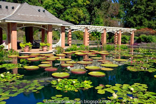 Water Garden Huntsville Alabama USA Botanical Gardens Picture