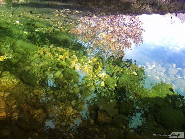 estanque-reflejos-cielo