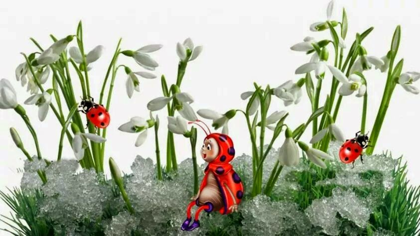 Jaro a berušky