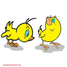 Wallpaper Chicken cartoon
