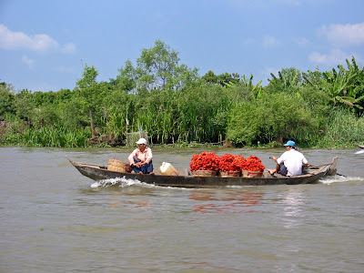 (Vietnam) - Ho Chi Minh (Saigon)- Visit the Mekong Delta