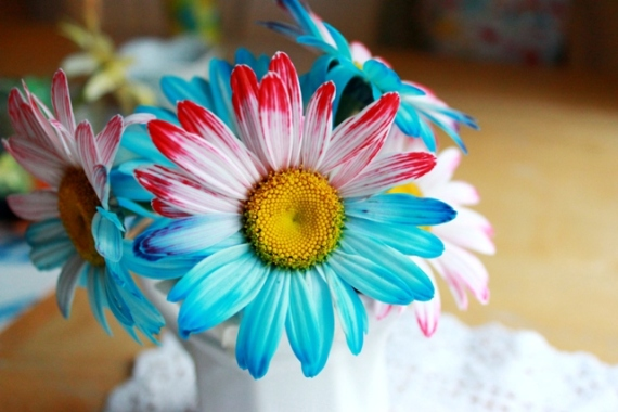 How to press a flower tinkerlab for How to dye flowers using food coloring