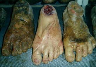 kaki manusia