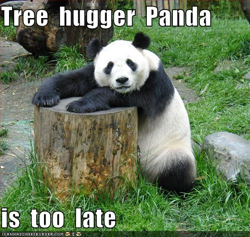 Funny animals funny pictures funny panda pictures tree hugger funny panda voltagebd Image collections