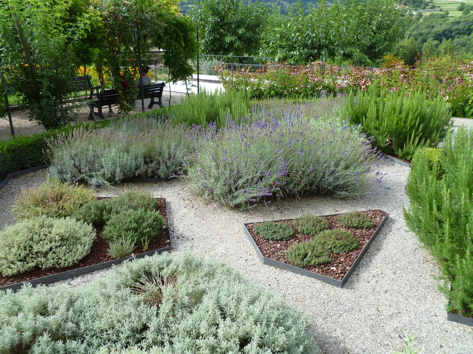 Centro ricerca piante officinali veneto for Aiuole giardino immagini