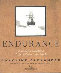 Endurance - A lendária expedição de Shackleton à Antartica