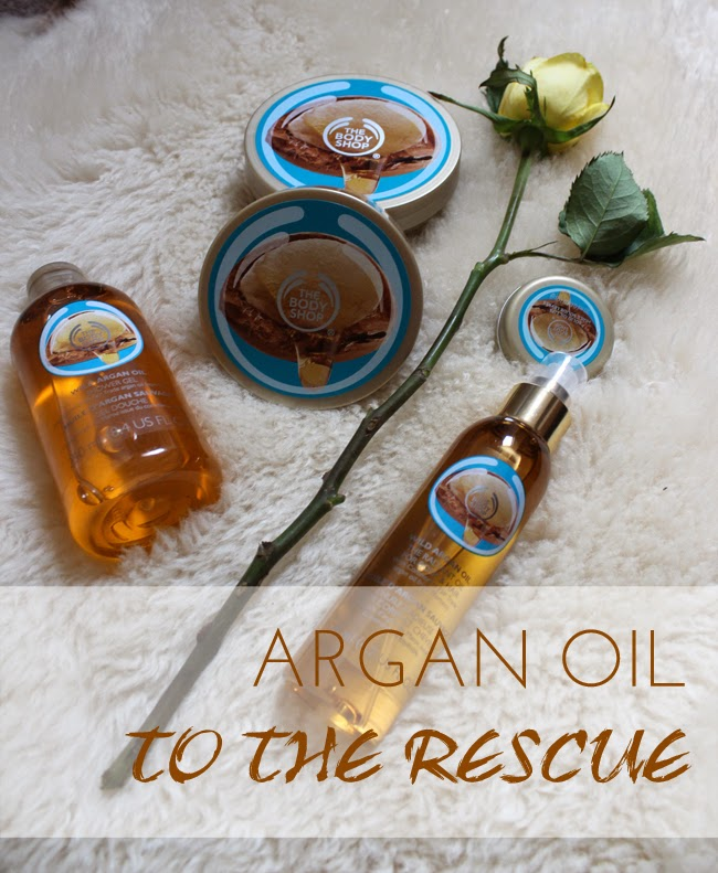 argan oil, beauty, little-support-needed-todaymyway.com