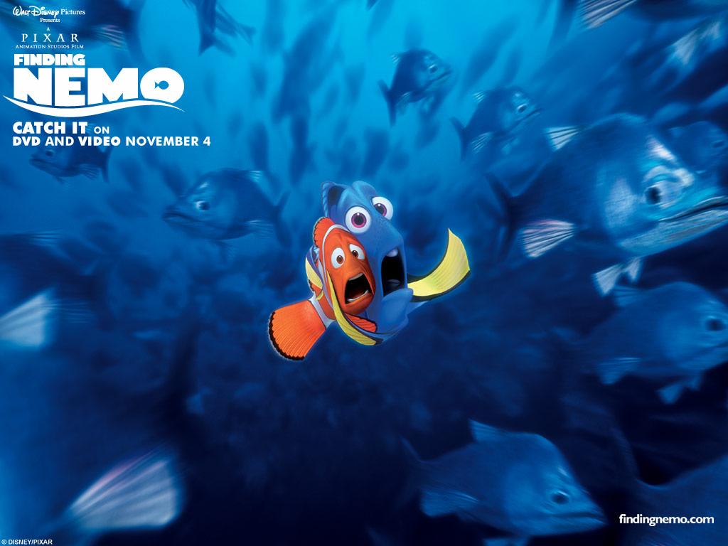 Fotos De Nemo
