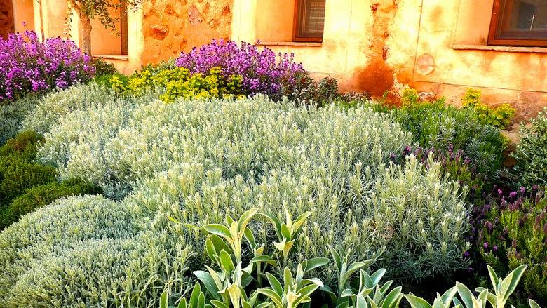 Jard n patio en toledo ancha es castilla - El jardin mediterraneo ...