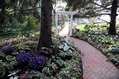 pergola-patio-flores