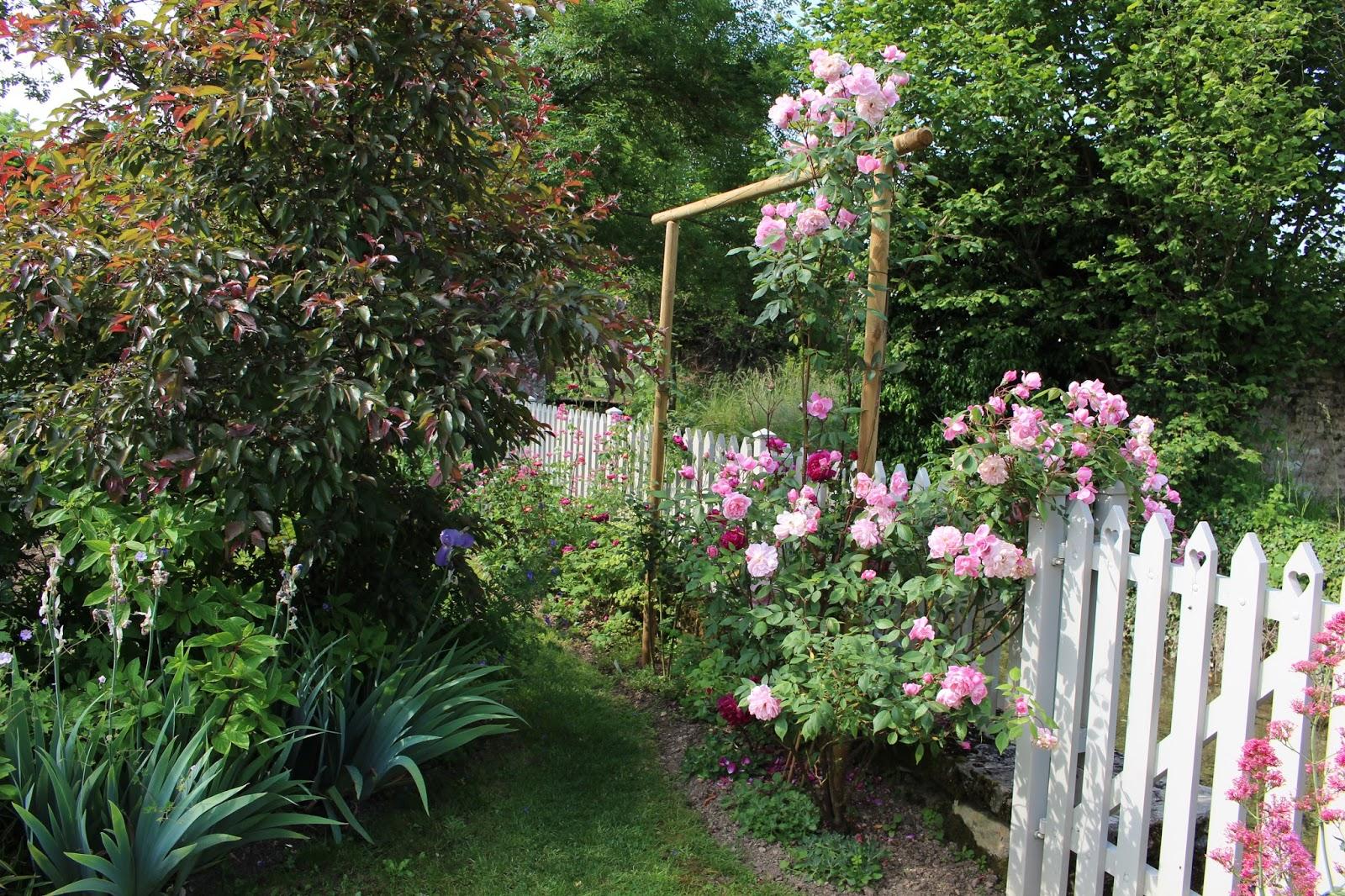 Les roses du jardin secret the mortimer sackler david for Jardin roses