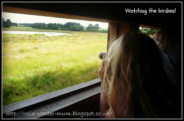 bird hide, the Vyne, National Trust