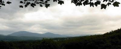 Panorama de la zone de prospection des champignons, notamment des morilles
