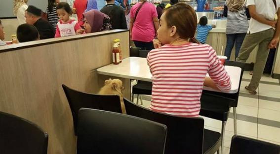 Bawa anjing makan di KFC Tawau, wanita ini dikecam